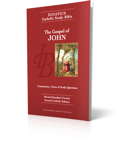 Catholic Gospel Book