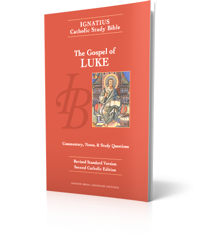an introduction to the history of the gospel of luke An introduction to the gospel of luke the gospel of luke is is probably theological rather than chronological as he develops salvation-history.