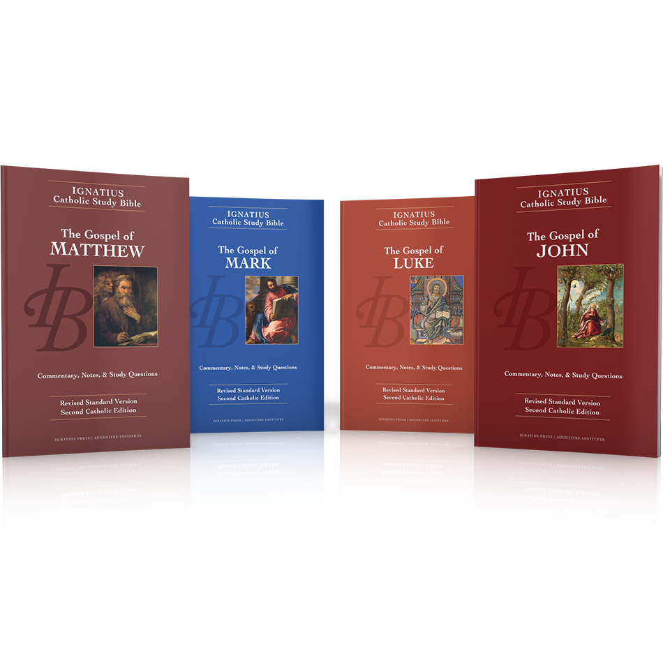 Ignatius Catholic Study Bibles Bundle - Ignatius Press