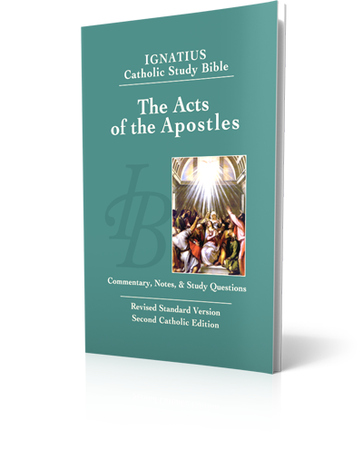 The Acts Of The Apostles Study Bible Lighthouse Catholic Media