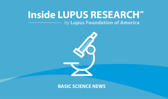 Study Examines Link Between Lupus and B Cells' Genetic Material