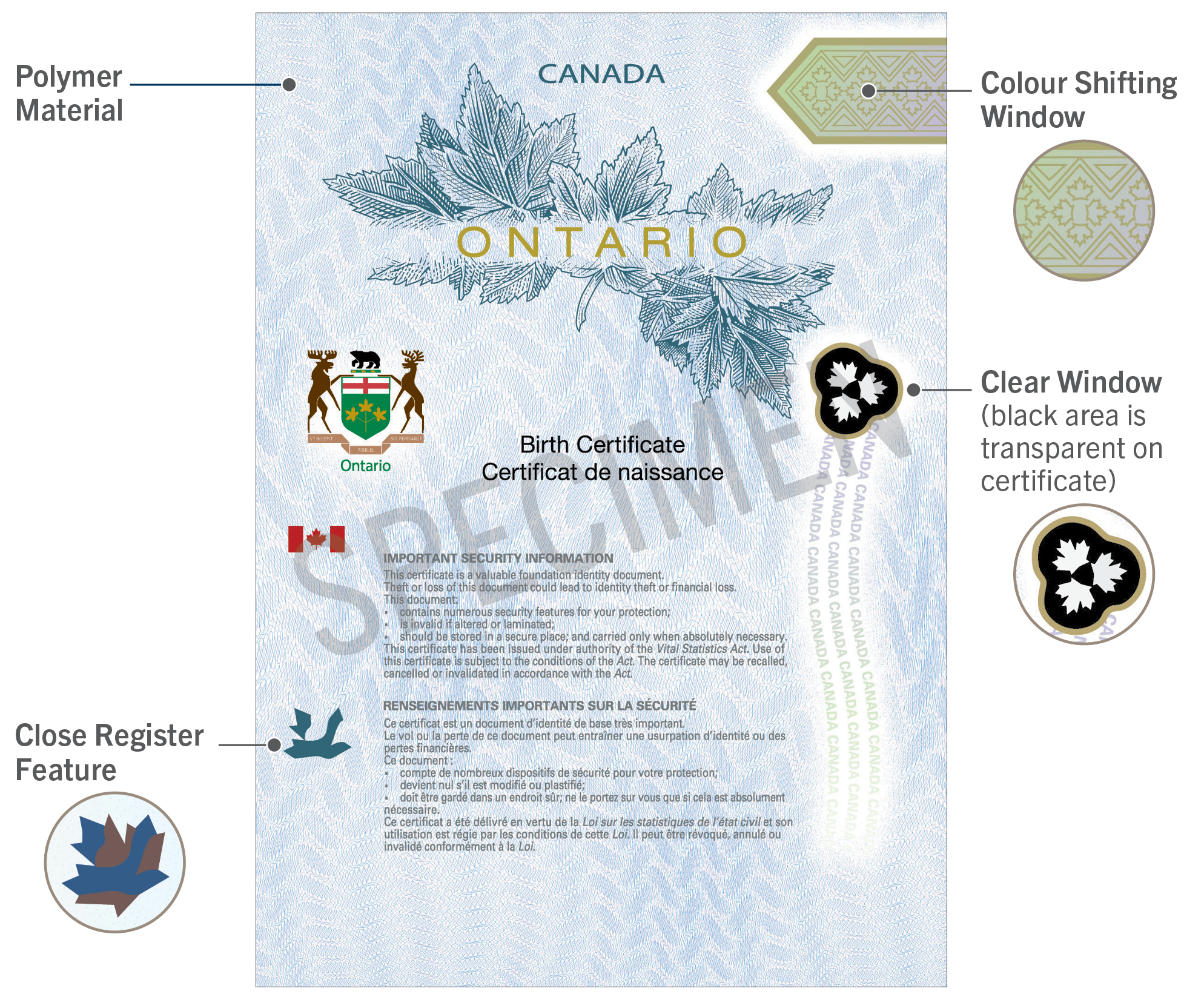 Inspirational stock of canadian birth certificate business cards newsroom polymer birth certificates aiddatafo Image collections