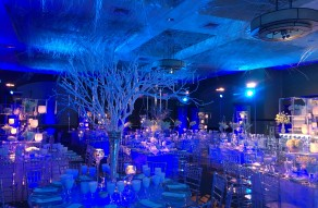 Lighting by NYFF Events