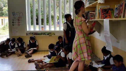 Gabriella Miyares library project