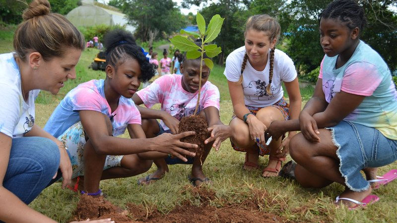 Students and Volunteers planting plants