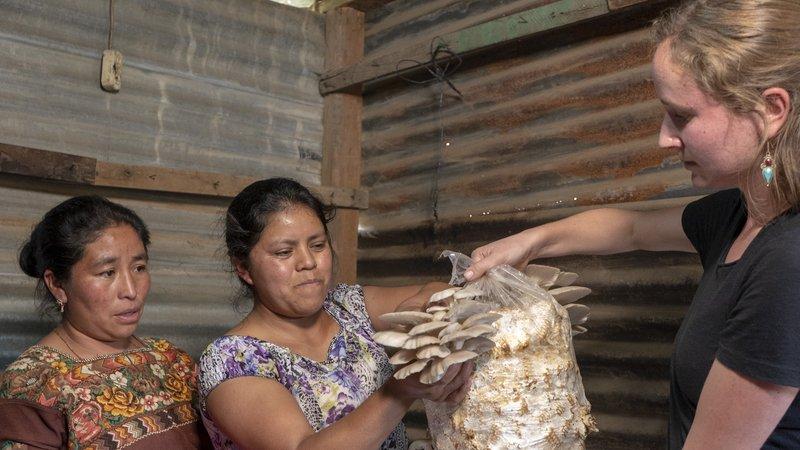RachelMoore2_FTF_Guatemala