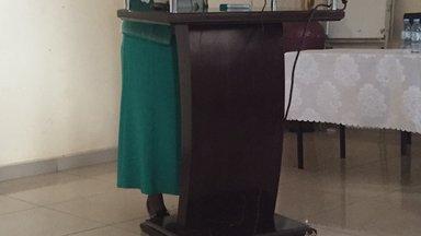 Hon Joyce at the conference.JPG