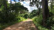 The road to my village in Sierra Leone