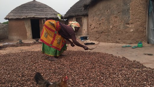 Feed the Future Water Project Ghana (Women with shea nuts)