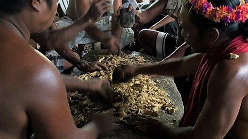 Pounding the sakau root