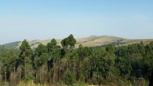 Combating HIV stigma in Swaziland