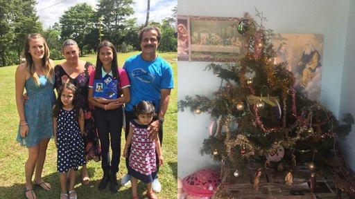 Tree and family