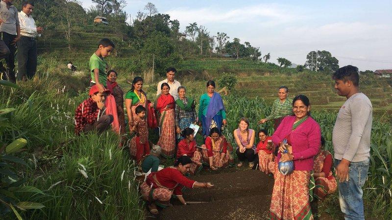 having_fun_planting_rice.jpg
