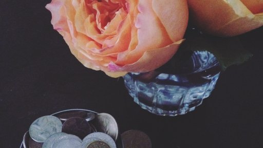 With just my pocket change, I can afford roses to brighten my room.