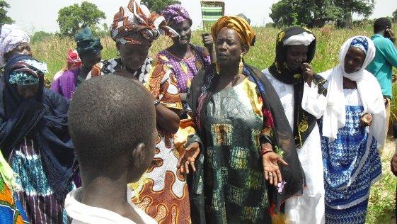 Meet Fatou, Peace Corps Senegal Master Farmer