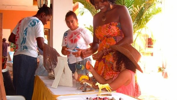 Community Economic Development Volunteer (Dominican Republic)