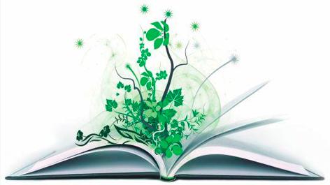 Curso de Capacitación en Educación Ambiental