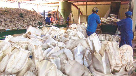 Curso de Capacitación en Gestión de Residuos Sólidos Peligrosos