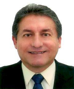 LUIS FERNANDO BRINGAS EGUSQUIZA