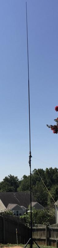 Buddipole set up in a 20m vertical configuration with four elevated counterpoise elements.