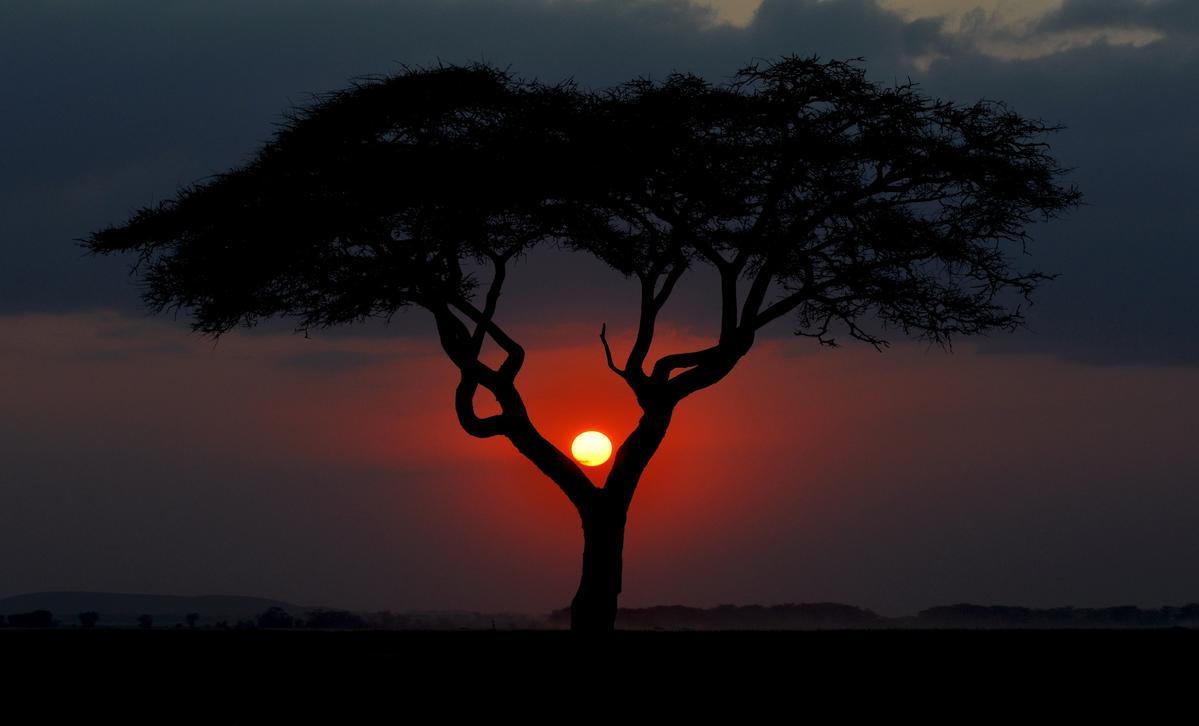https://s3.amazonaws.com/files.qrz.com/b/5z4_g3ab/kenya_3816810.jpg