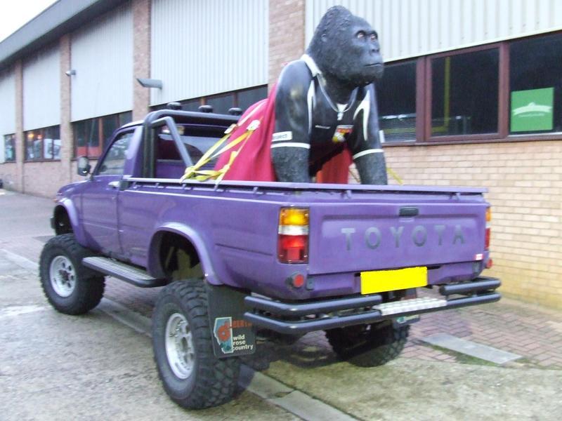 Gladstone the Gorilla, in our Toyota truck