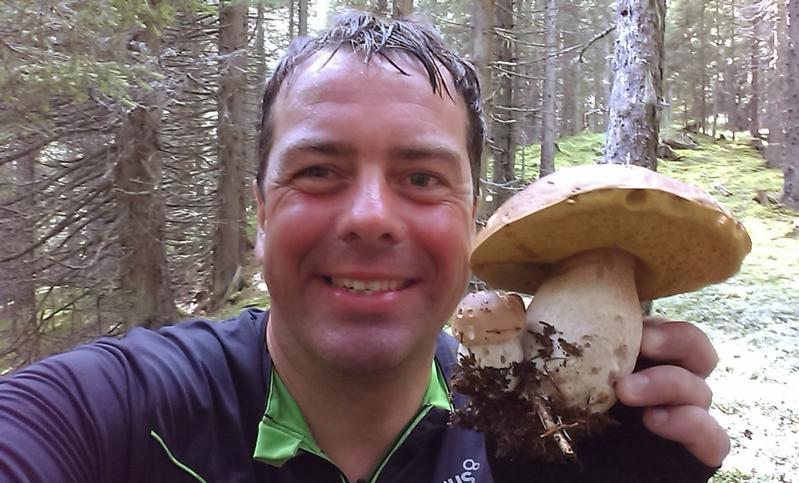 ... collect mushrooms
