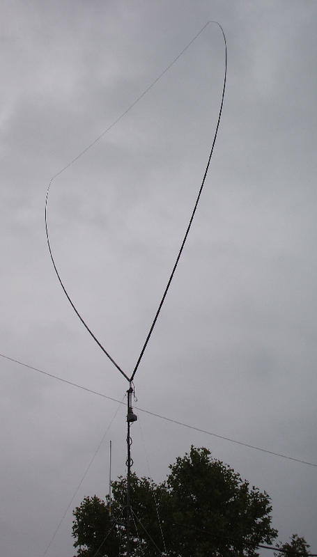 Delta loop for 20 m, but works well also in 17m