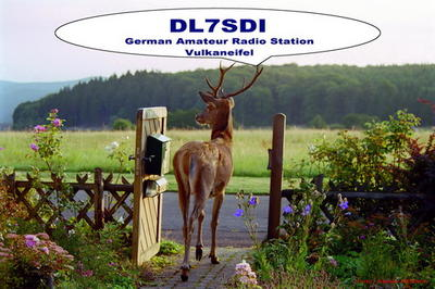 Our friend shown on my QSL-card. It's not a fake - that' life....