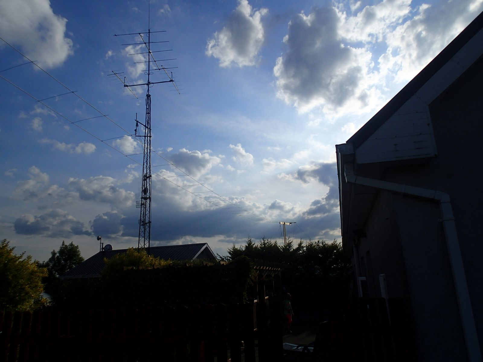 100ft 43 element antenna constructed by EI7DMB @ 5meters