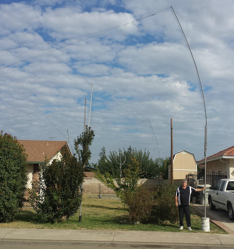 16 foot 'seconds' ( oil pipe) planted 3 feet into cement up 13feet , 3 feet overlap to 20 ft fiberglass 'almond knocking' pole. = 30 ft end support with out guy wires. Note anti-car crash cement above ground.