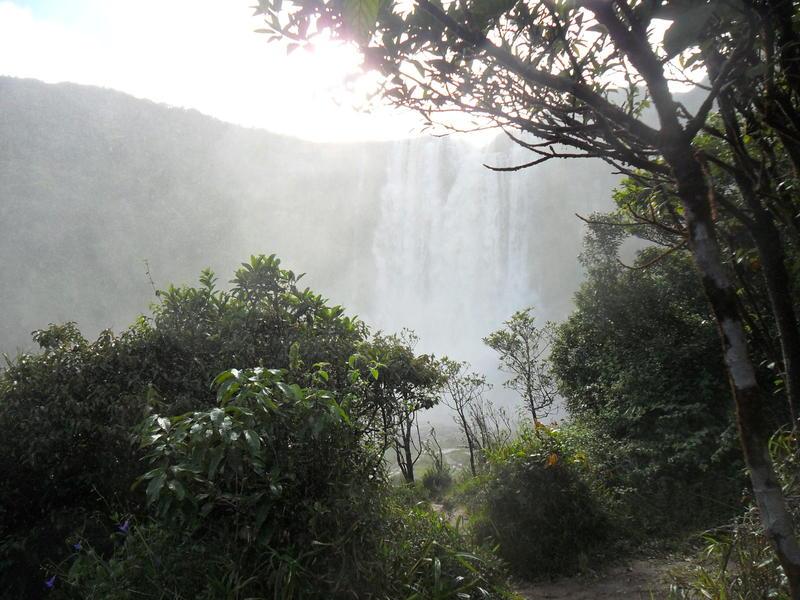 Salto aponwao Gran Sabana