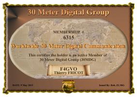 30MDG Membership Certificate