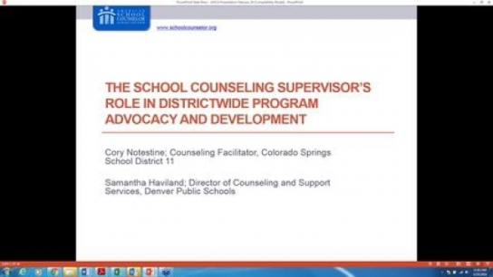 School Counseling Supervisor's Role in Districtwide Program Advocacy & Development