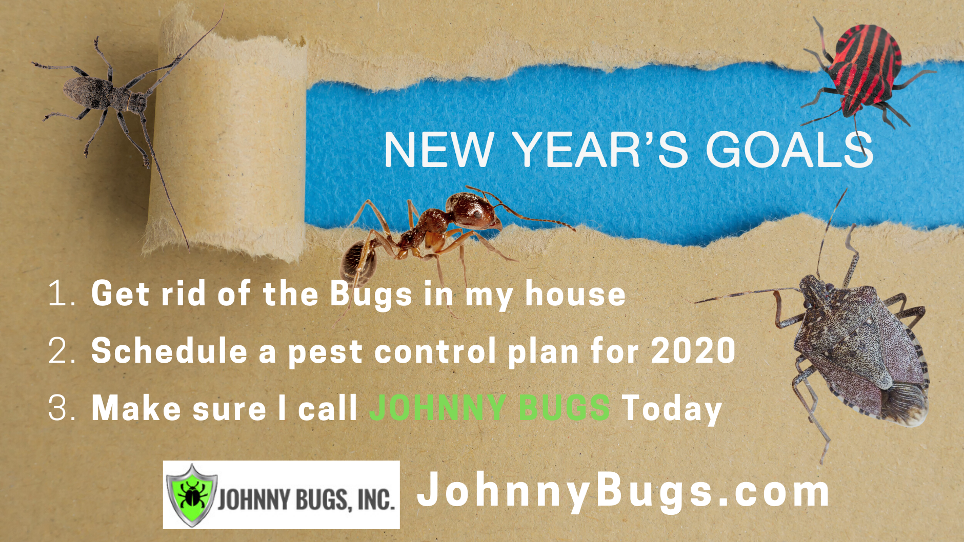 johnny_bugs.png