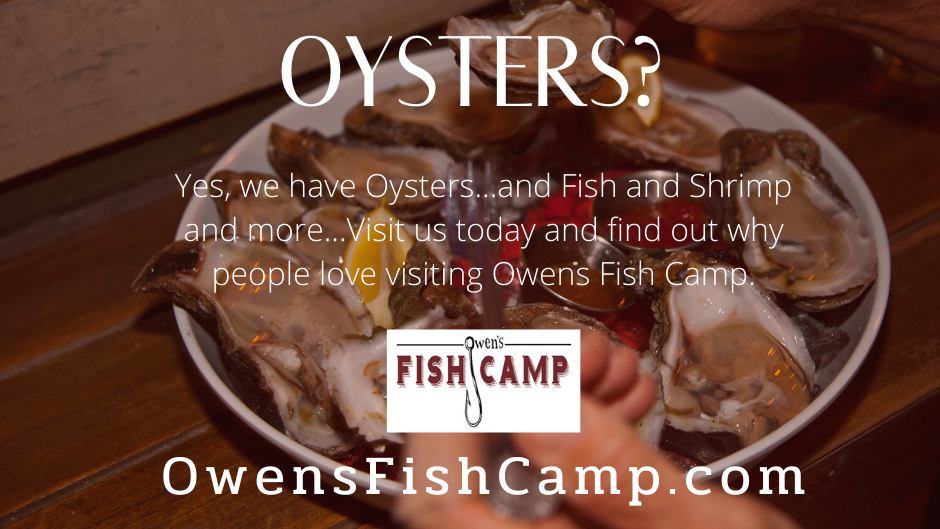 owens_fish_camp.png