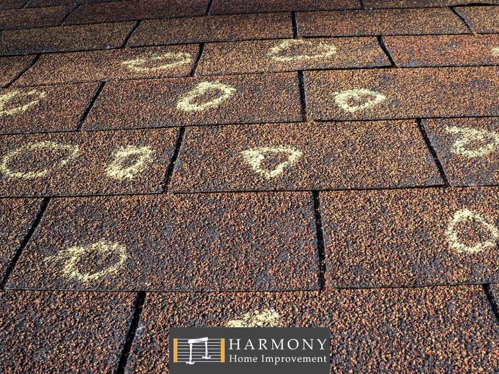 11-harmonyhomeimprovement4.jpg
