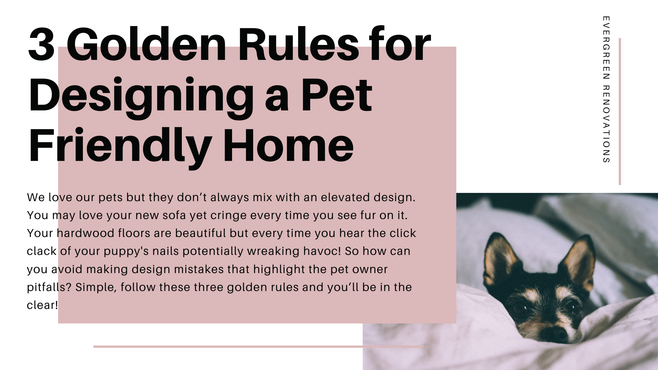 pet-friendly-home_banner.png
