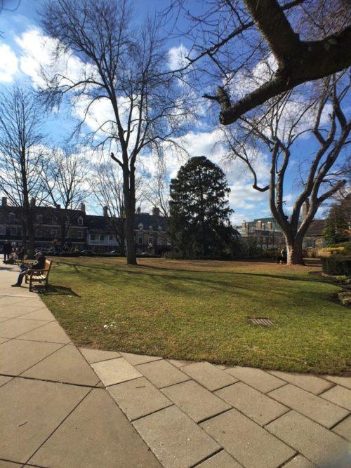 Princeton7C