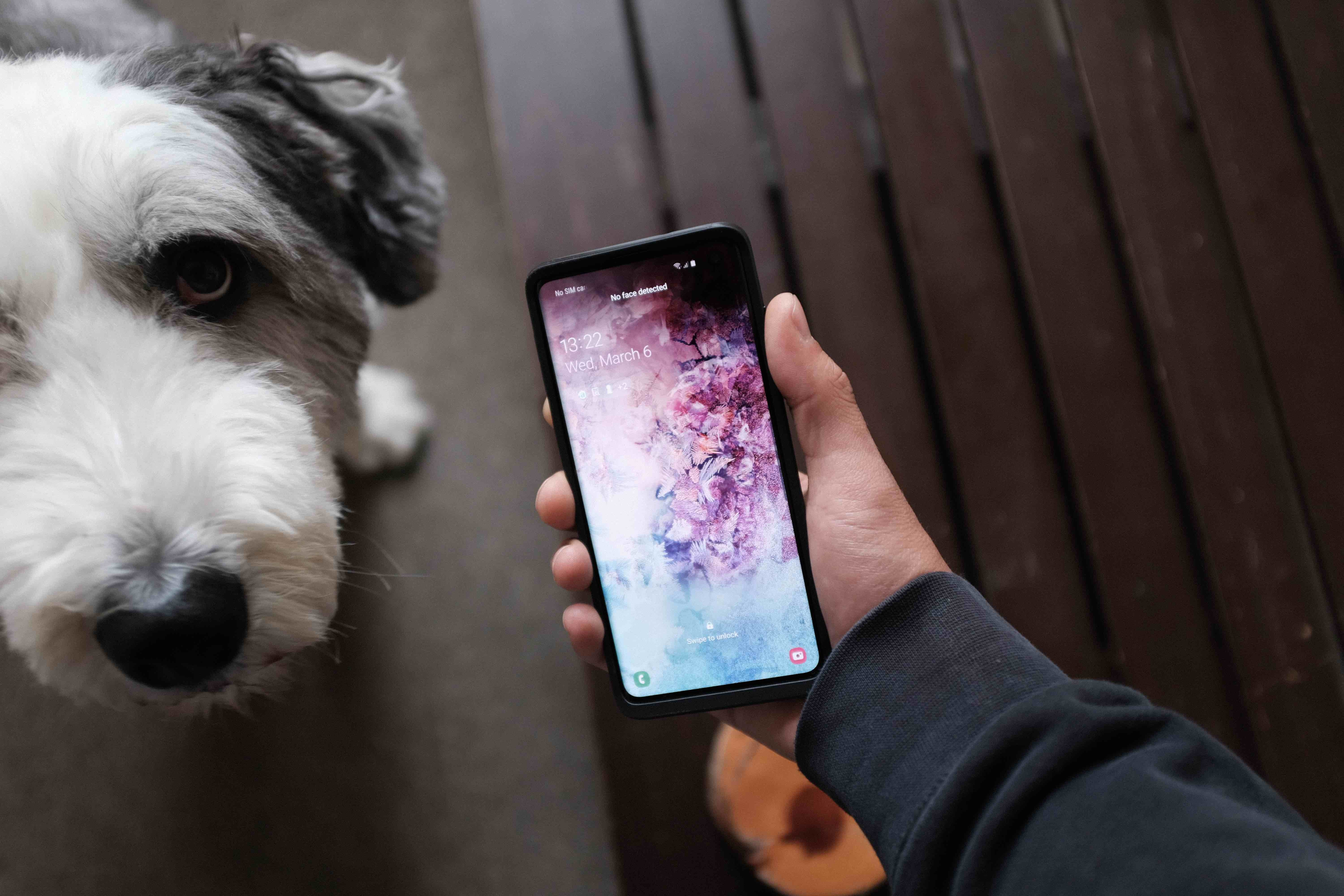 Samsung Galaxy S10 Camera Review - Moment