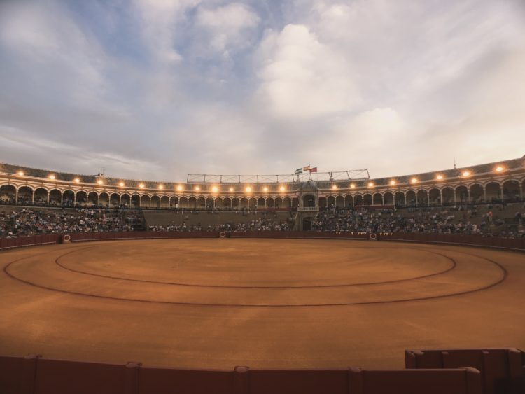 Bullfighting Img 0124