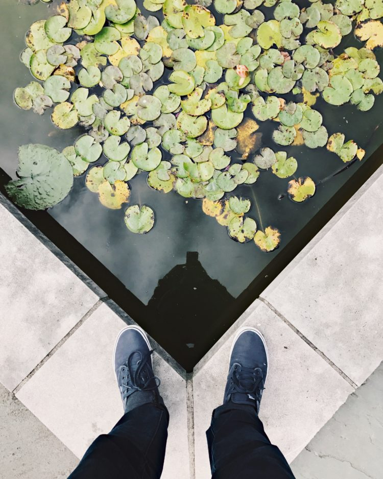Moment Twheat Brooklyn Botanical 1