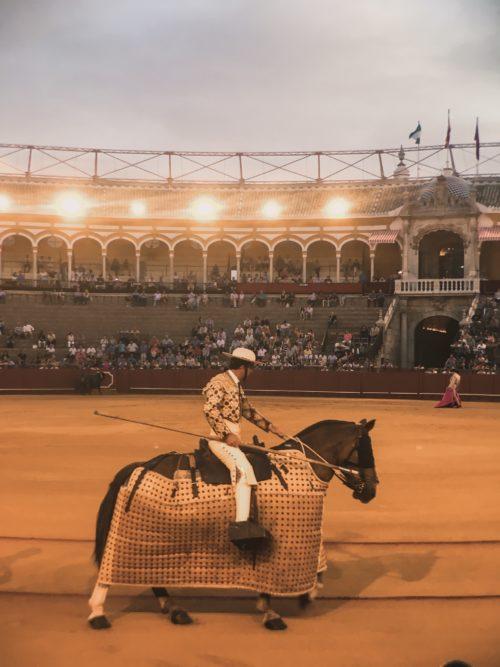 Bullfighting Img 0125