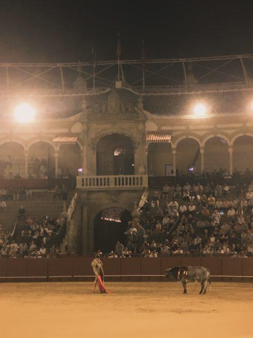 Bullfighting Img 0129