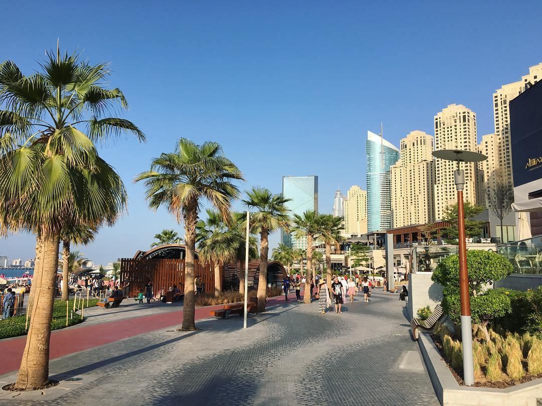 List Of Hotels In Jbr Dubai