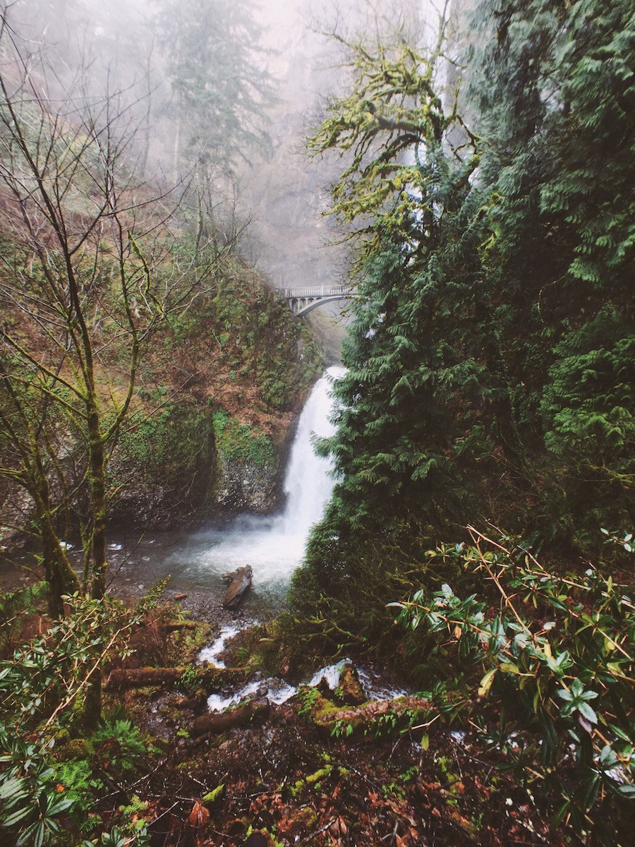 Oregon 6