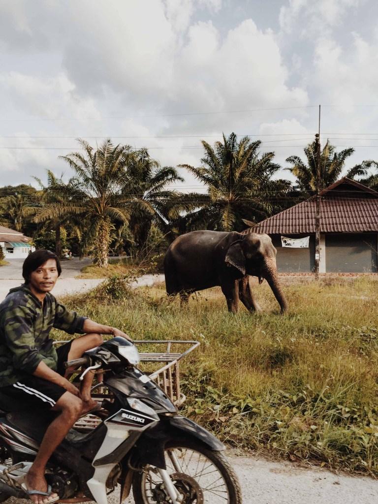 Thailand 17B