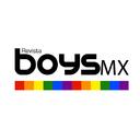 Revistaboysmx