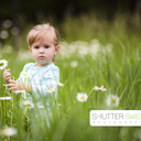 Shutter Sweetphoto