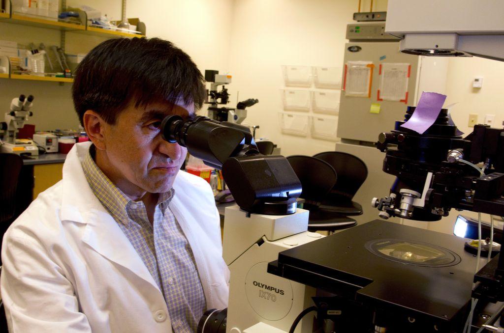 El embriólogo Shoukhrat Mitalipov lidera un esfuerzo para alterar el ADN de embriones usando CRISPR.